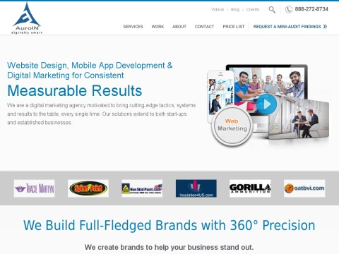 Auroin Website promotion company