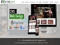 Fertile Frog Web Design and SEO Services