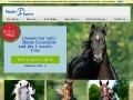 Your Stables: Horse Care