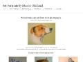 Pet Portraits by S.A. Challand Studio