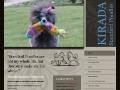 Kirada Standard Poodles
