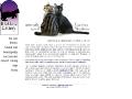 Blakkatz Cattery - Naturally Raised American Short
