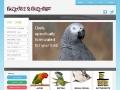 Pretty Bird Pet Foods