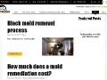 Mold Removal | Arleta | First To Respond Restoration, Inc