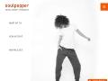 Soulpepper: Digital Marketing, Full service Marketing Agency