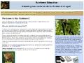 RainforestEducation