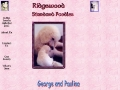 Ridgewood Standard Poodle