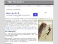 Tiny Mosquito