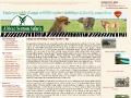 Continental African Sermon Safaris