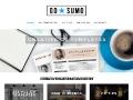 GoSumo CV Templates - Creative CV templates for MS Word