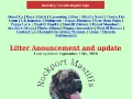 Rockport Mastiffs - English Mastiff Breeders