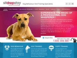 SitDropStay Dog Training