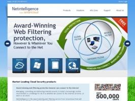 Netintelligence Internet Security