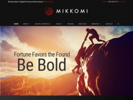 Mikkomi / Digital Presence Management
