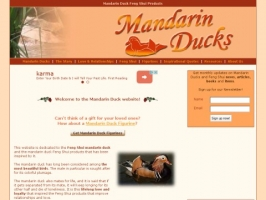 Mandarin Duck Feng Shui