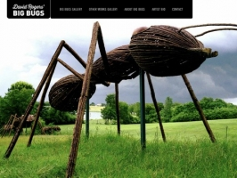 Dave Rogers Big Bugs