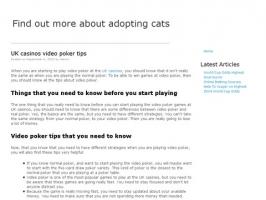 Cat Rescue And Adoption